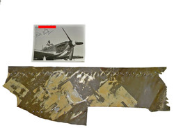 P-40 panel kill markings Billy Drake