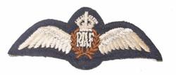 RAF pilot wing 1.