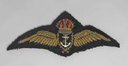 FAA pilot wing