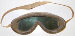 AAF Polaroid 1021 goggles