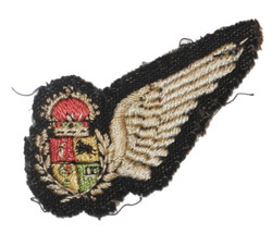 SAAF Observer brevet