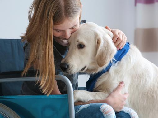 Los perros de asistencia. Tipologías y habilidades específicas.