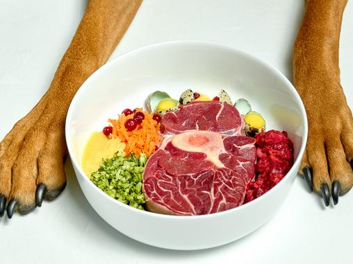 Alimentación Natural: la mejor dieta y medicina para la salud de tu perro y gato