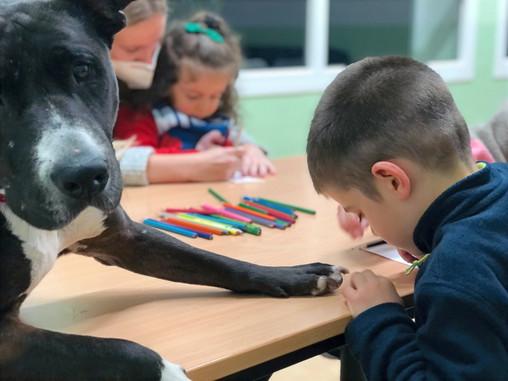 El Síndrome de Asperger en la Intervención Asistida con Perros