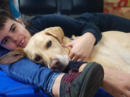 Beneficios de la Intervención Asistida con Perros en personas con Trastorno del Espectro Autista
