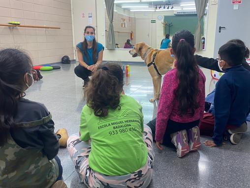 Actividad Asistida con Perros sobre Concienciación Animal