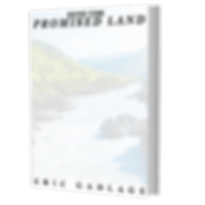 INTO THE PROMISED LAND 3D BOOK COVER.png