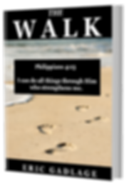The Walk 3D Book Cover.png