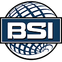 BSI Main Logo Globe Only_no_Bkgrd.png
