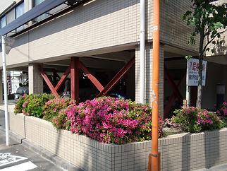 マンション耐震補強①【施工後】