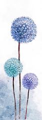 פרח1.png