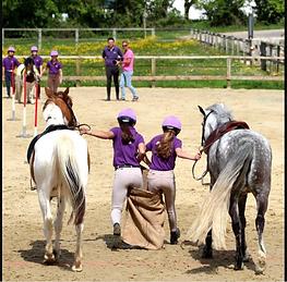 2021 jeux a poneys.PNG