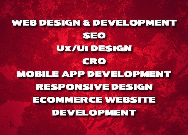 Picturesque Web Design Services.jpg