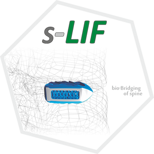 slif-768x768.png