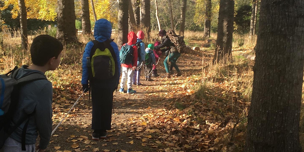 Autumn: One Day School  (1)