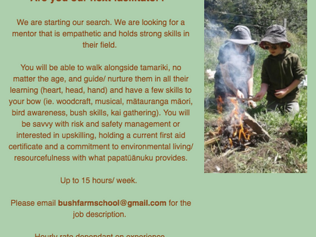 Are you our next facilitator, or know someone who might?