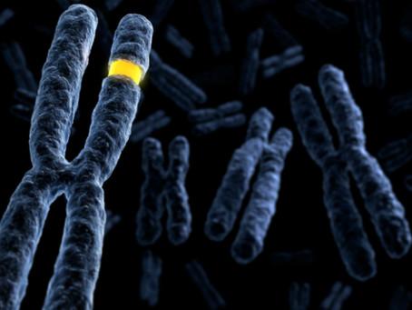 基因與糖尿病 Genetics and Diabetes