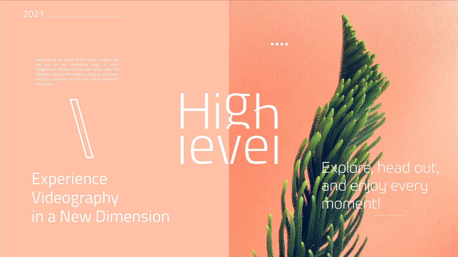 HighLevel03.jpg