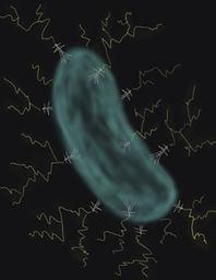 electric bacteria sketch_towers.jpg