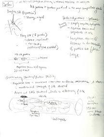 sketchbook6.jpeg