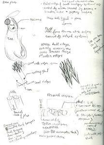 sketchbook2.jpeg