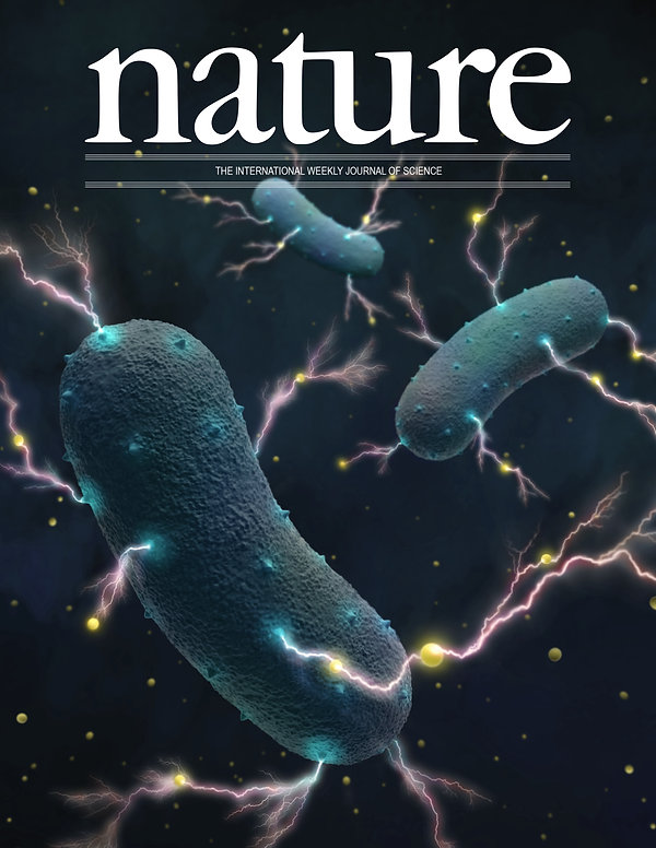 3 bacteria COVER-01.jpg