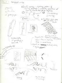 sketchbook5.jpeg
