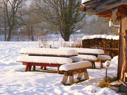 Schank-Winter