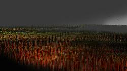 Untitled, 2013,  45 x 80 cm, Ed. of 5, Digital painting