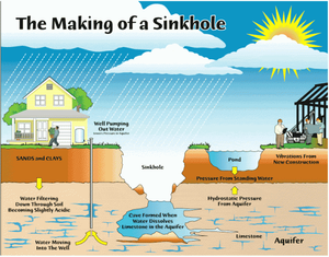 Types Of Sinkholes Found In Florida and What Causes Them To Form