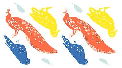 Oiseaux illustrés