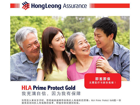 HLA Prime Protect Gold SK 19_Page_06.jpg