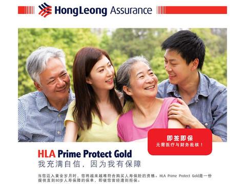 HLA Prime Protect Gold SK 19_Page_06.jpg