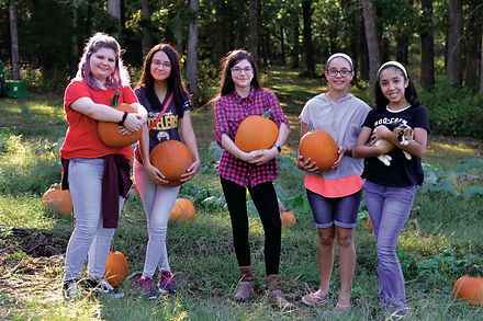 pumpkins edited.jpg