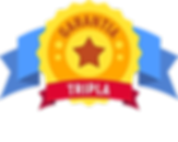 icone-garantia-tripla-2.png.pagespeed.ce