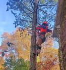 erica climbing.jpg