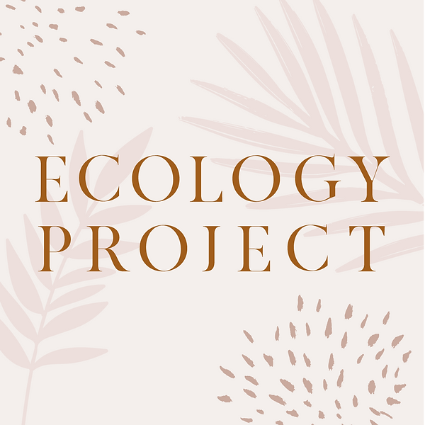 Ecology Project Final Artboards PNG_Seco
