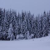 snow-3086948.jpg
