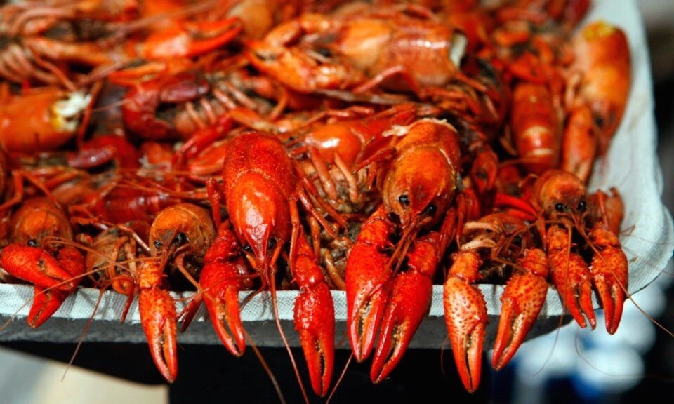 Keep the Mardi Gras Spirit Alive at Park Tavern's Oyster Crawfish Festival This Saturday