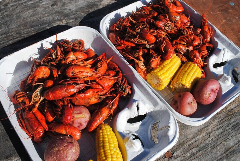 Keep the Mardis Gras Spirit Alive at the 16th Annual Oyster Crawfish Festival at Park Tavern