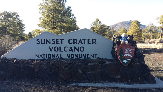 Sunset Crater Volcano National Monument, AZ #15