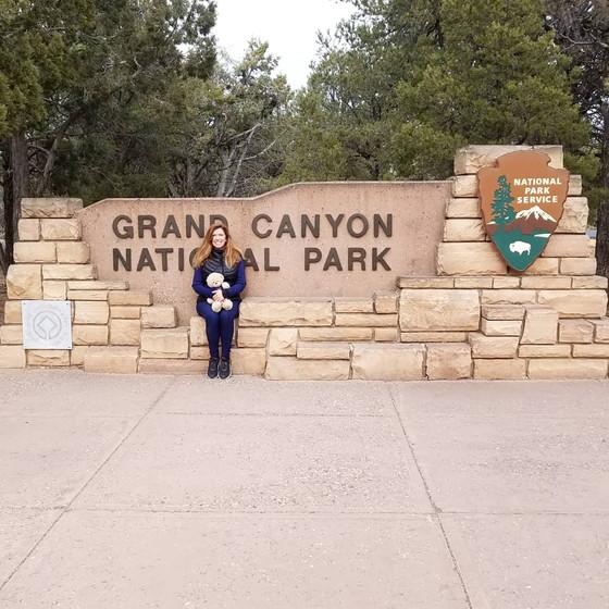 #9 The Grand Canyon National Park, AZ