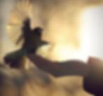 Capture d'écran 2020-06-20 à 23.11.46.pn