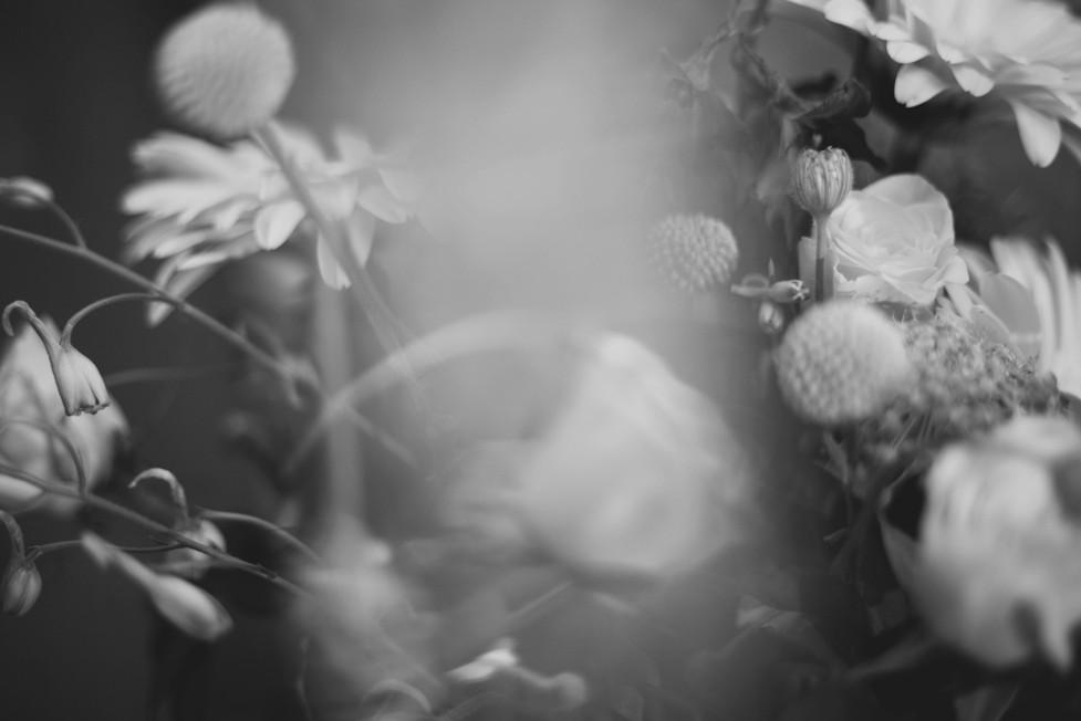 fleurs flouesbasse def.JPG