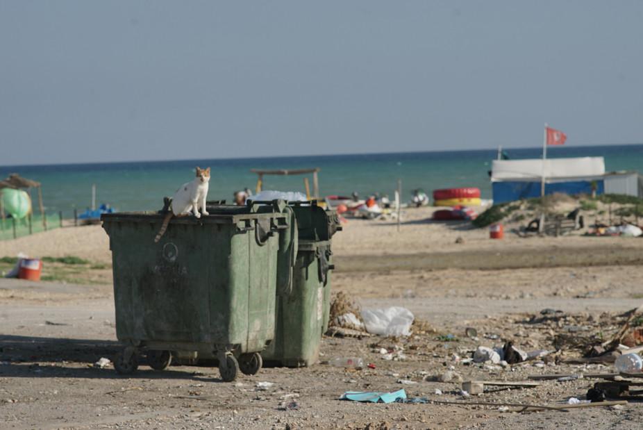 Tunisie71.JPG