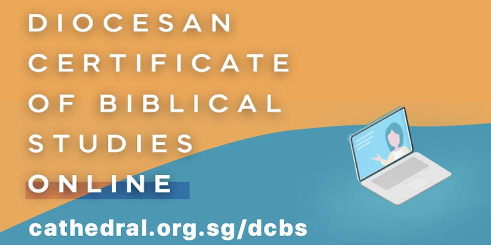 Diocesan Certificate of Bible Studies (Online)