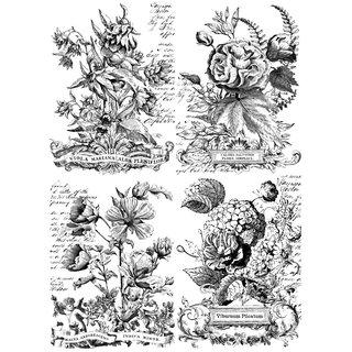 "IOD Transfer ""Classic Bouquets Paintable"