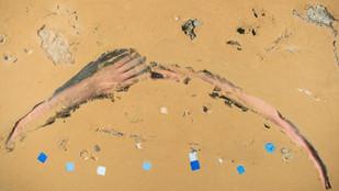 Hands_web_4.jpg