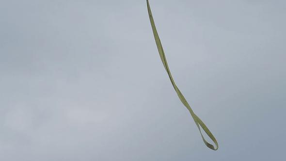 vlcsnap-2021-03-03-15h15m35s853.png