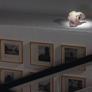 'The Endless Solution', 2005